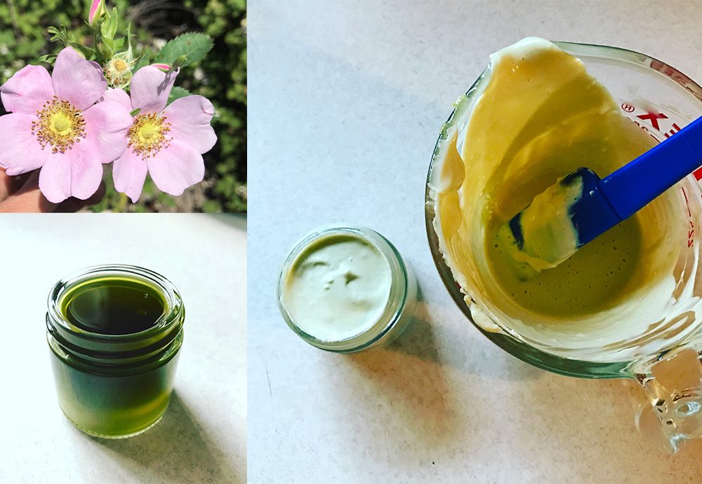 Moon Wise Herbals. Meet the Maker series blog post. Wild Rose, Chickweed & Violet Leaf Salve, Mixing bowl with ingredients for body cream.