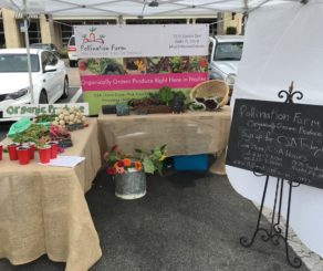 Pollination Farm Farmers Market Booth