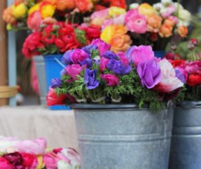Buckets of Flowers at Farmers Market