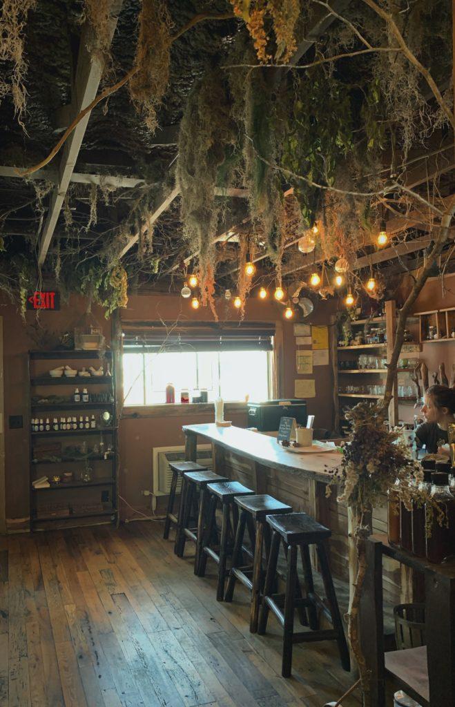 Kombucha Bar at High Garden Tea in Nashville, TN
