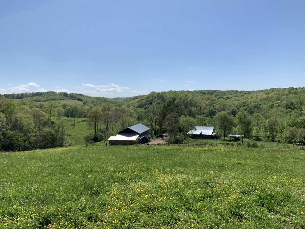View from a hilltop of Long Hungry Creek Farm.